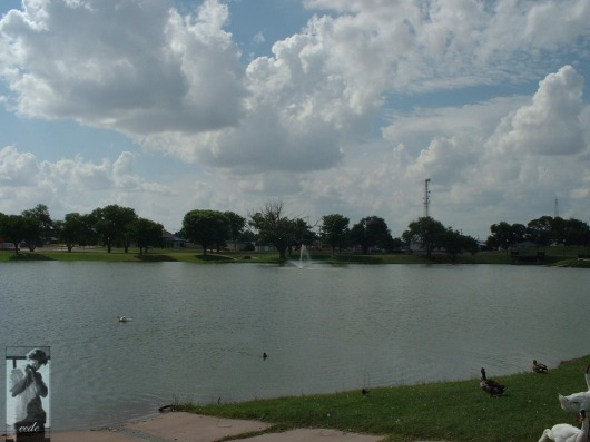 2007 Levelland, TX 14