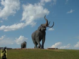 2007 Lubbock, TX 4
