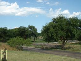 2007 Lubbock, TX 5