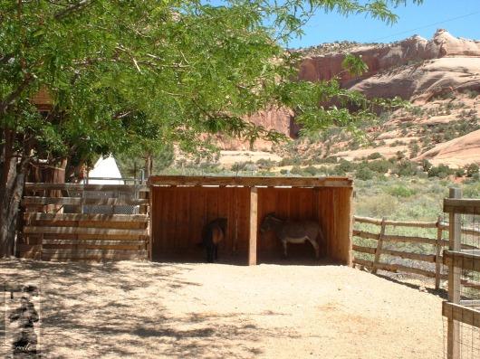 2008 Moab, UT 1