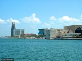2010 Corpus Christi, TX Aquarium 6