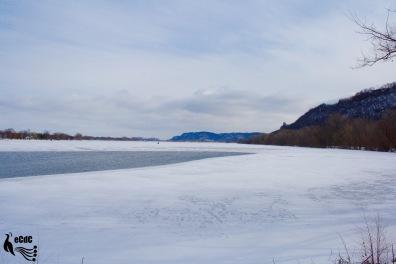 2012-1-17-winona-11