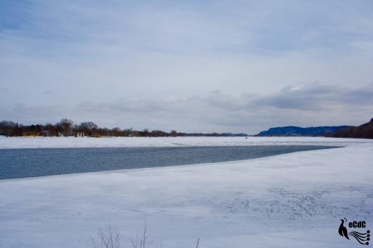 2012-1-17-winona-15