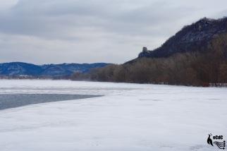2012-1-17-winona-31