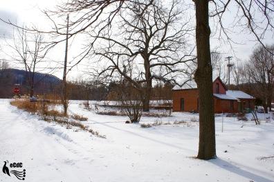 2012-1-17-winona-7