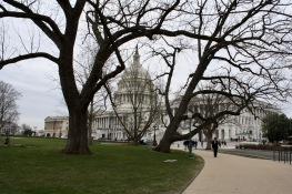 2018 04-06 US Capitol 04