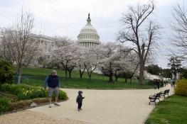 2018 04-06 US Capitol 07