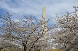 2018 04-06 Washington Monument 01