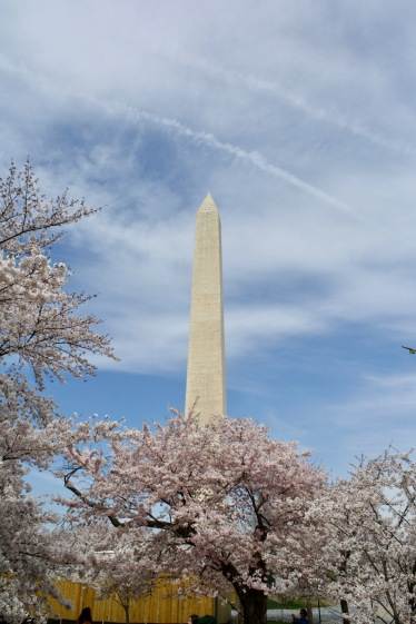 2018 04-06 Washington Monument 02