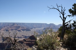 2018 06-07 Grand Canyon 03