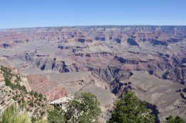 2018 06-07 Grand Canyon 06