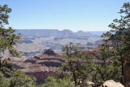 2018 06-07 Grand Canyon 17