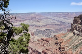 2018 06-07 Grand Canyon 45