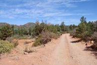 2018 06-28 Margs Draw Trail 30