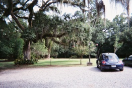 2010 The Myrtles 13