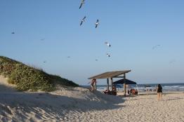 2011 Malaquite Beach 11