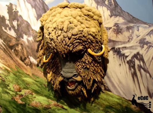 2015 05-27 MoMA 16