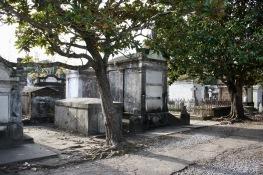 2018 12-26 Lafayette Cemetery No 1 04