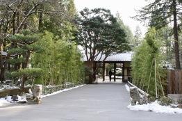 2019 02-07 Japanese Gardens 02