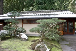2019 02-07 Japanese Gardens 04