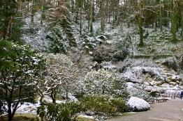 2019 02-07 Japanese Gardens 08