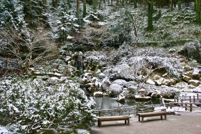 2019 02-07 Japanese Gardens 10