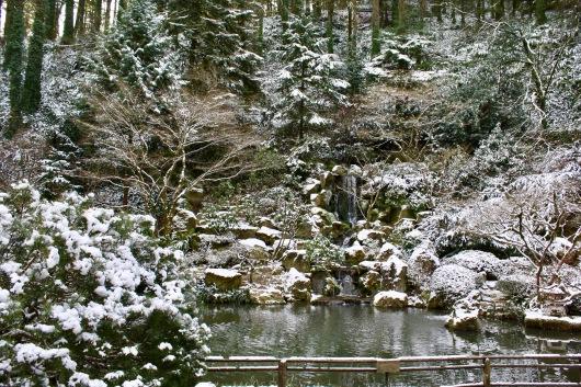 2019 02-07 Japanese Gardens 12