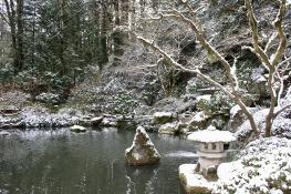 2019 02-07 Japanese Gardens 15