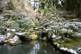 2019 02-07 Japanese Gardens 17