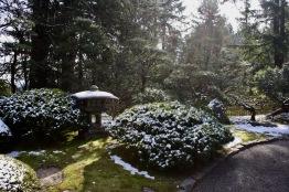 2019 02-07 Japanese Gardens 25