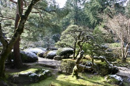 2019 02-07 Japanese Gardens 29