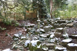 2019 02-07 Japanese Gardens 30