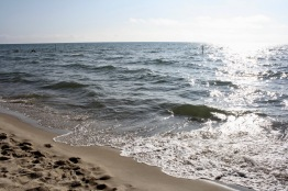 2019 08-08 Oval Beach MI 07