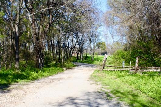 2016 03-20 Cedar Hill State Park 01