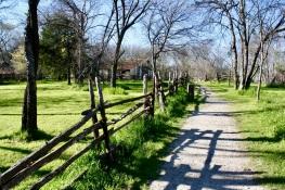 2016 03-20 Cedar Hill State Park 15