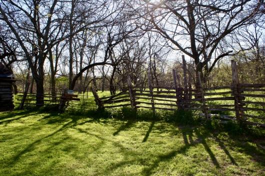 2016 03-20 Cedar Hill State Park 20
